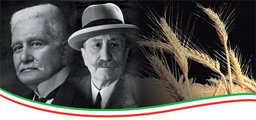 L'Azienda Agricola San Francesco Bio per la produzione della pasta ha scelto il Grano Duro del Senator Cappelli, 100 anni di Storia.