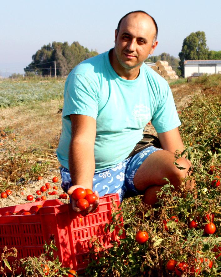 Vendita prodotti biologici Pomodoro io Azienda San Francesco Bio - Maremma Toscana