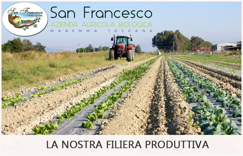 agricoltura biologica dell'azienda san francesco bio